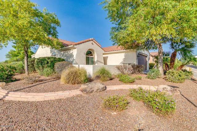 26858 W Runion Drive, Buckeye, AZ 85396 (MLS #6133624) :: Conway Real Estate