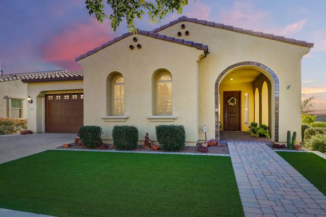 4655 N 206TH Avenue, Buckeye, AZ 85396 (MLS #6133648) :: Long Realty West Valley