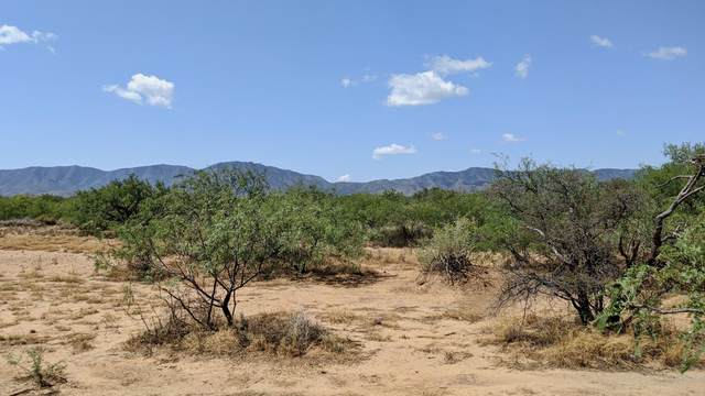 17 Ac On Main Road, Pearce, AZ 85625 (MLS #6133660) :: The Everest Team at eXp Realty