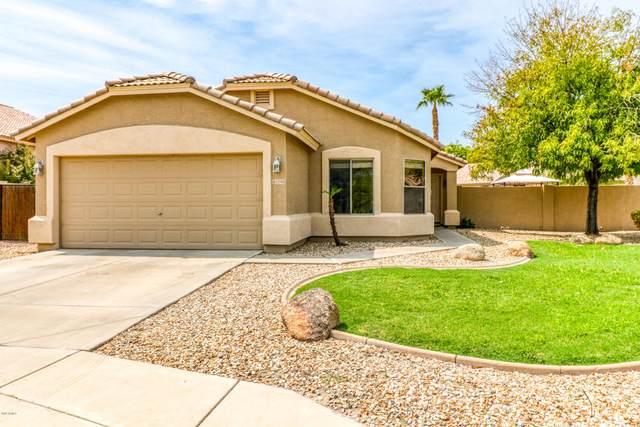 13705 W Solano Drive, Litchfield Park, AZ 85340 (MLS #6133679) :: Conway Real Estate