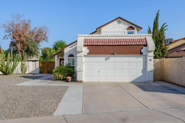719 N Criss Street, Chandler, AZ 85226 (MLS #6133681) :: Conway Real Estate