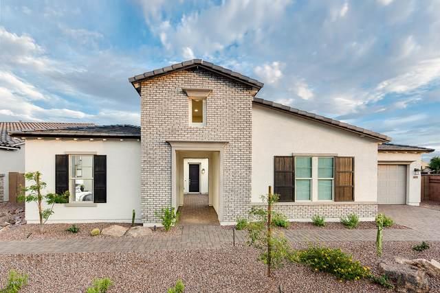 4055 E Grand Canyon Drive, Chandler, AZ 85249 (MLS #6133695) :: Klaus Team Real Estate Solutions
