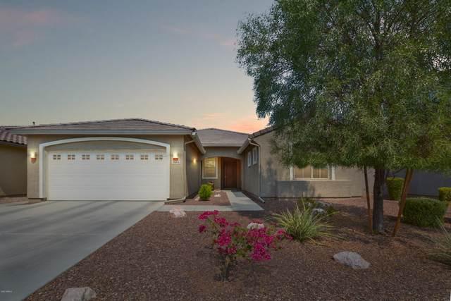 3548 E Alfalfa Drive, Gilbert, AZ 85298 (MLS #6133710) :: Selling AZ Homes Team