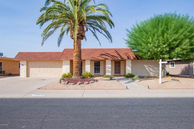 10642 W Mimosa Drive, Sun City, AZ 85373 (MLS #6133735) :: Long Realty West Valley