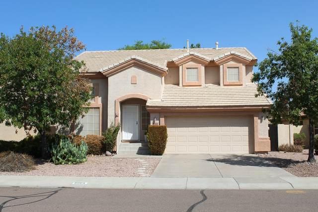 8002 W Frank Avenue, Peoria, AZ 85382 (MLS #6133740) :: The AZ Performance PLUS+ Team