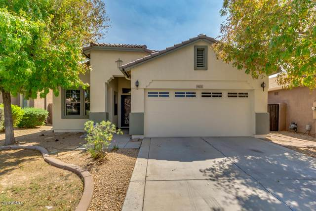 4621 W Fortune Drive, Anthem, AZ 85086 (MLS #6133758) :: Conway Real Estate