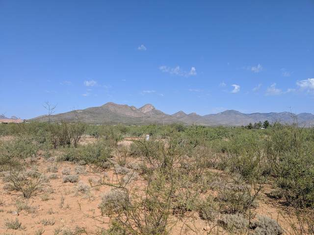 Parcel Monte Cristo Way, Huachuca City, AZ 85616 (MLS #6133794) :: Keller Williams Realty Phoenix