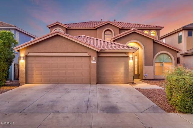 43578 W Cydnee Drive, Maricopa, AZ 85138 (MLS #6133802) :: Openshaw Real Estate Group in partnership with The Jesse Herfel Real Estate Group