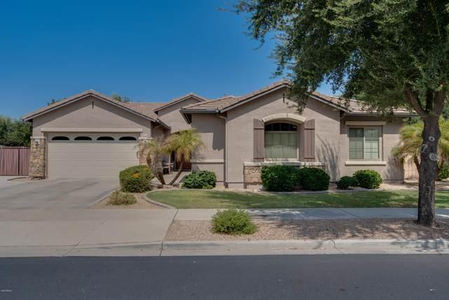 18668 E Canary Way, Queen Creek, AZ 85142 (MLS #6133805) :: Balboa Realty
