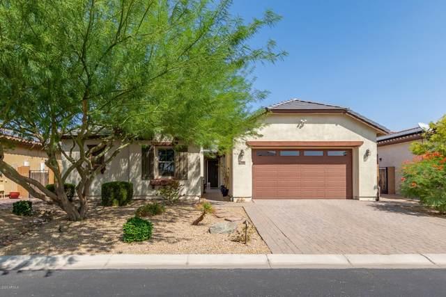 7958 W Whitehorn Trail, Peoria, AZ 85383 (MLS #6133816) :: Conway Real Estate