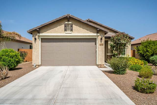 26100 W Oraibi Drive, Buckeye, AZ 85396 (MLS #6133839) :: Klaus Team Real Estate Solutions
