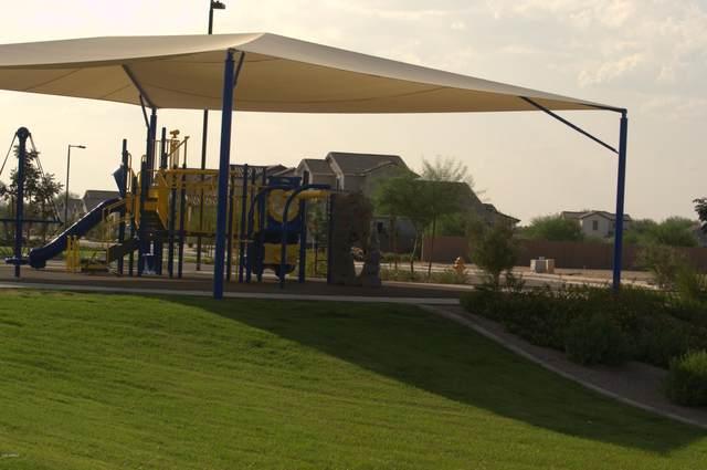 21156 E Cherrywood Drive, Queen Creek, AZ 85142 (MLS #6133858) :: Dijkstra & Co.