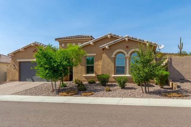 26876 N 102ND Lane, Peoria, AZ 85383 (MLS #6133895) :: Howe Realty