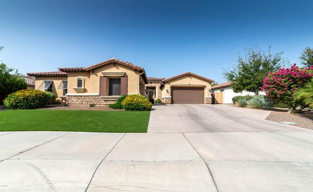 4792 N Barranco Drive, Litchfield Park, AZ 85340 (MLS #6133902) :: Conway Real Estate