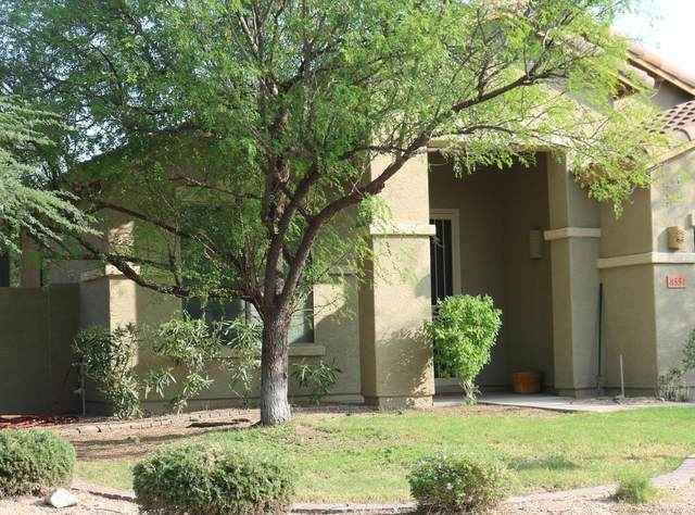 8551 W Andrea Drive, Peoria, AZ 85383 (MLS #6133905) :: The Laughton Team