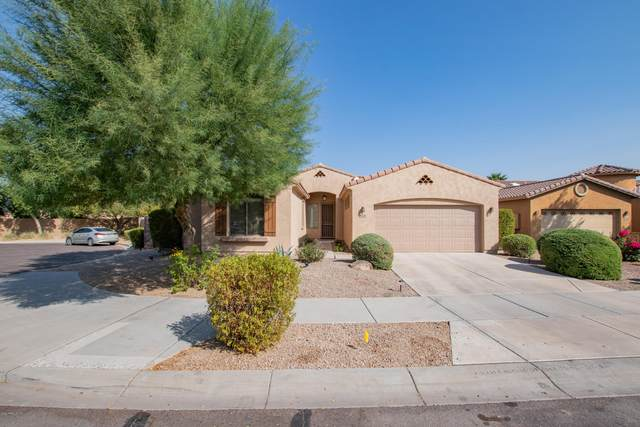 2210 W Fawn Drive, Phoenix, AZ 85041 (MLS #6133947) :: Conway Real Estate