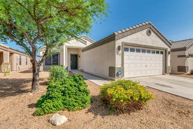 12036 W Caribbean Lane, El Mirage, AZ 85335 (MLS #6133950) :: Klaus Team Real Estate Solutions