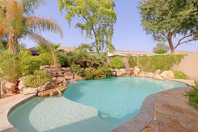 3530 W Quail Track Drive, Phoenix, AZ 85083 (MLS #6133984) :: TIBBS Realty