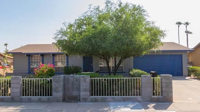 3029 N 75TH Drive, Phoenix, AZ 85033 (MLS #6133986) :: My Home Group