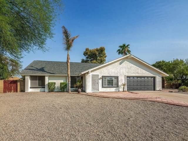 15212 N 23rd Avenue, Phoenix, AZ 85023 (MLS #6133996) :: The W Group