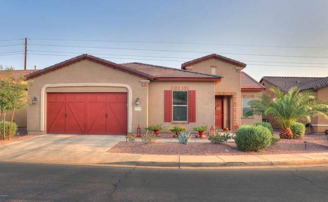 42229 W Cribbage Road, Maricopa, AZ 85138 (MLS #6134064) :: Selling AZ Homes Team