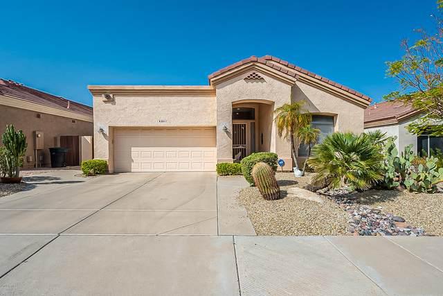 6611 E Viewmont Drive, Mesa, AZ 85215 (MLS #6134068) :: Sheli Stoddart Team | M.A.Z. Realty Professionals