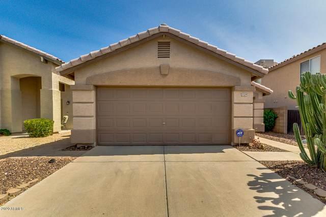 17239 N 42ND Street, Phoenix, AZ 85032 (MLS #6134071) :: Lucido Agency