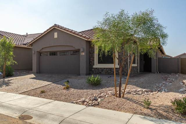 4217 W Acorn Valley Trail, New River, AZ 85087 (MLS #6134076) :: Yost Realty Group at RE/MAX Casa Grande