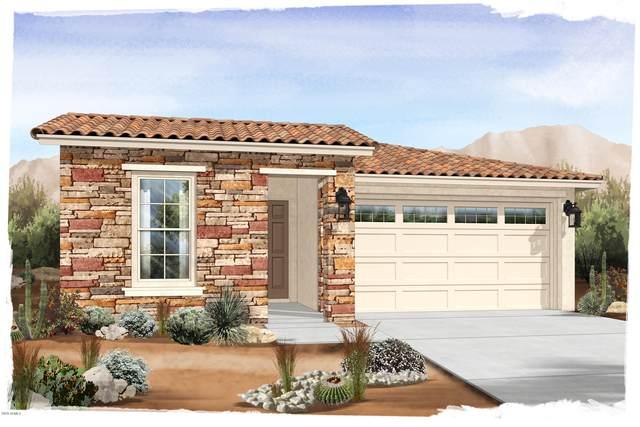 18814 W Medlock Drive, Litchfield Park, AZ 85340 (MLS #6134086) :: Conway Real Estate