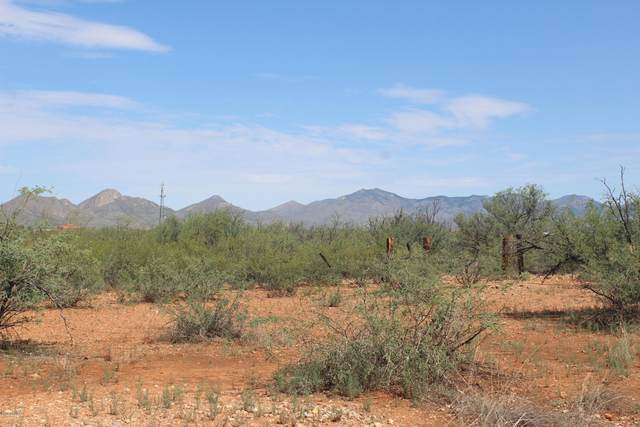 TBD Taylor 106-15-039 M Way, Huachuca City, AZ 85616 (MLS #6134087) :: Klaus Team Real Estate Solutions