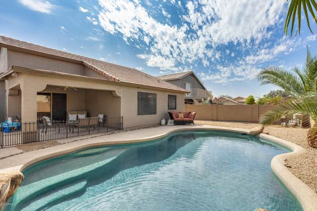 3906 N 125TH Lane, Avondale, AZ 85392 (MLS #6134119) :: The Laughton Team