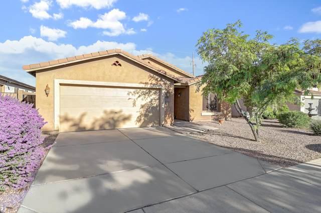 6863 S Sunrise Way, Buckeye, AZ 85326 (MLS #6134204) :: Long Realty West Valley