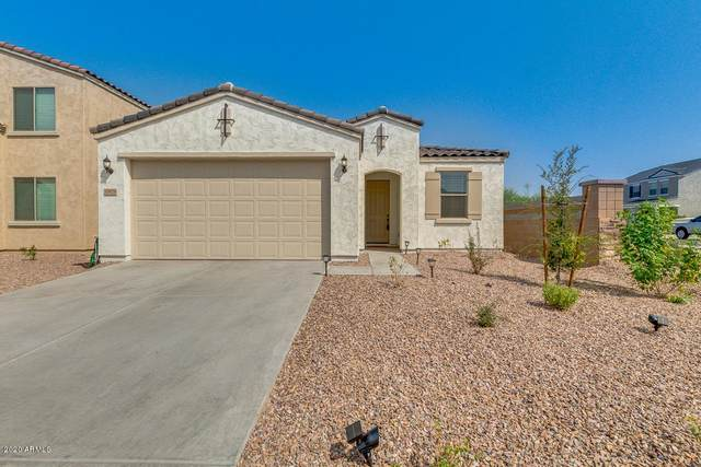 33929 N Menodora Lane, Queen Creek, AZ 85142 (MLS #6134223) :: Brett Tanner Home Selling Team