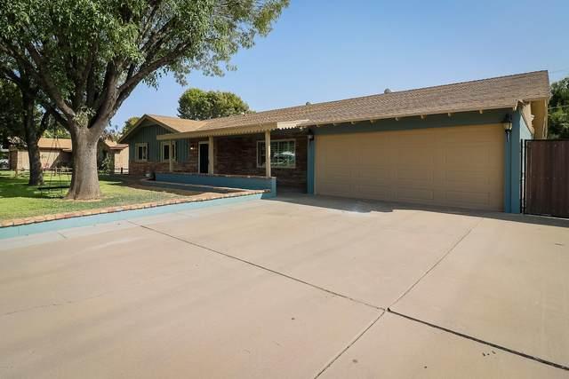 1417 W Orchid Lane, Phoenix, AZ 85021 (MLS #6134238) :: My Home Group