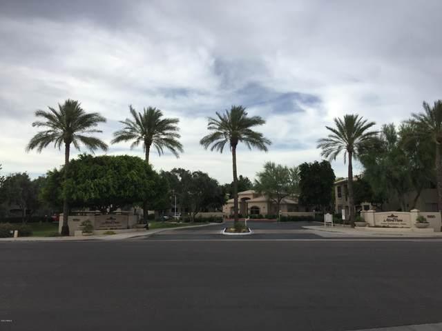 9550 E Thunderbird Road #244, Scottsdale, AZ 85260 (MLS #6134295) :: Conway Real Estate
