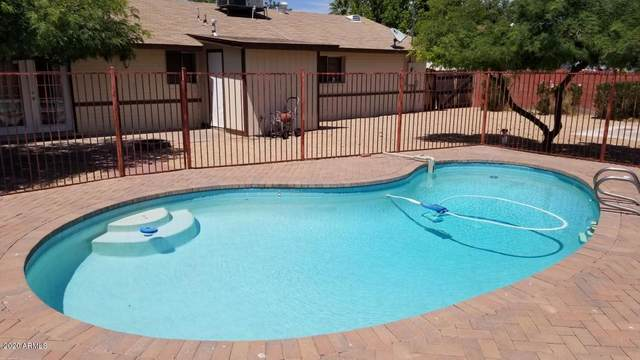 2515 E Karen Drive, Phoenix, AZ 85032 (MLS #6134331) :: Lucido Agency