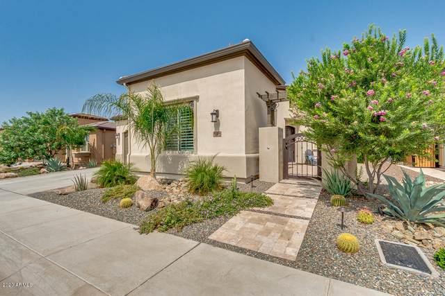 848 E Garden Basket Drive, San Tan Valley, AZ 85140 (MLS #6134353) :: Selling AZ Homes Team