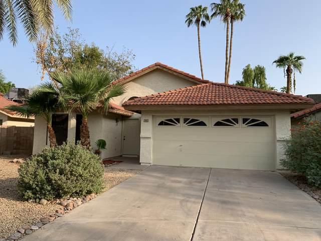 4120 W Gail Drive, Chandler, AZ 85226 (MLS #6134372) :: Conway Real Estate