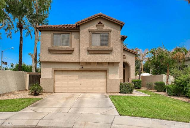 974 W Desert Broom Court, Chandler, AZ 85248 (MLS #6134386) :: D & R Realty LLC