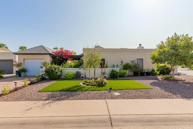 1500 W Mission Drive, Chandler, AZ 85224 (MLS #6134433) :: Conway Real Estate