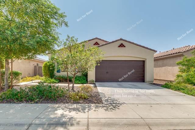 4433 E Saint John Road, Phoenix, AZ 85032 (MLS #6134450) :: Lucido Agency