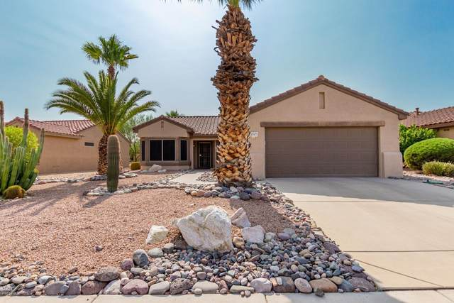 15971 W Indigo Lane, Surprise, AZ 85374 (MLS #6134472) :: D & R Realty LLC