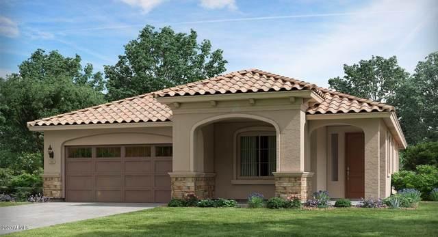 4721 N 203RD Avenue, Buckeye, AZ 85396 (MLS #6134475) :: D & R Realty LLC