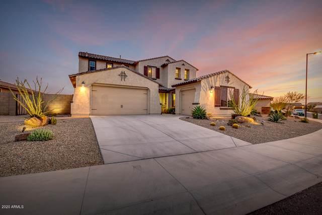 18305 W Raven Road, Goodyear, AZ 85338 (MLS #6134515) :: D & R Realty LLC