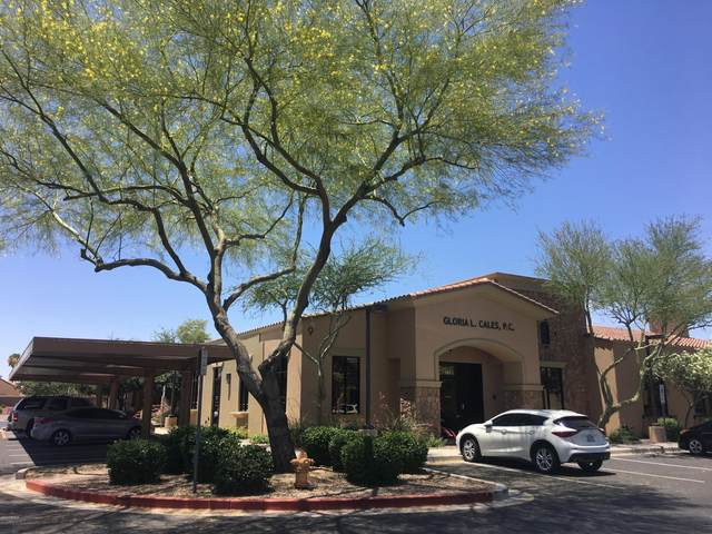 16515 S 40TH Street #141, Phoenix, AZ 85048 (MLS #6134523) :: Brett Tanner Home Selling Team