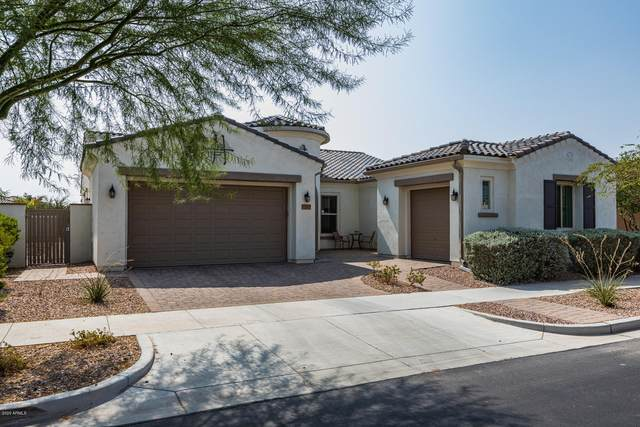 10309 E Bergeron Avenue, Mesa, AZ 85212 (MLS #6134532) :: The Laughton Team