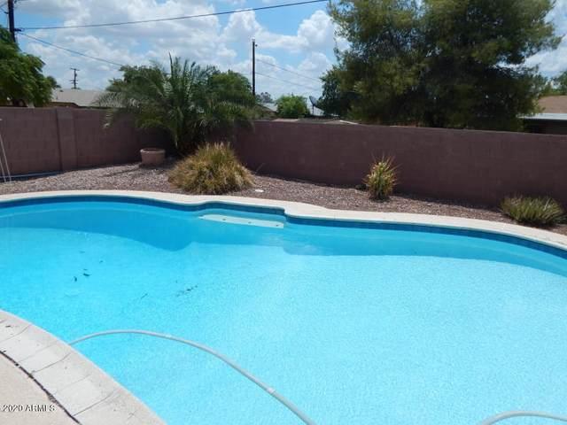 1513 W Campo Bello Drive, Phoenix, AZ 85023 (MLS #6134559) :: The Laughton Team