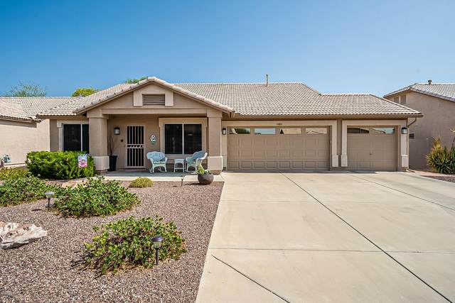 10881 W Oraibi Drive, Sun City, AZ 85373 (MLS #6134595) :: The Daniel Montez Real Estate Group