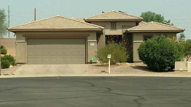 20043 N Organ Pipe Drive, Surprise, AZ 85374 (MLS #6134598) :: Nate Martinez Team