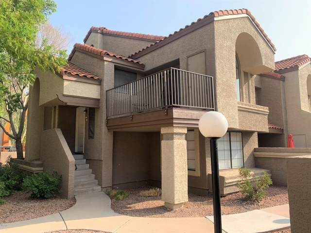1905 E University Drive #246, Tempe, AZ 85281 (MLS #6134625) :: Conway Real Estate